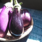 秋茄子は嫁に食わすなって迷信 実はとんでもない理由が隠されていた!