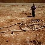 世界中で発掘された巨人の骨の存在は嘘? その真偽とは