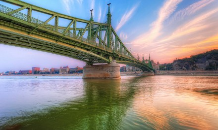 Building Bridges To A Sustainable Future