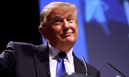Why is Donald Trump So Popular?