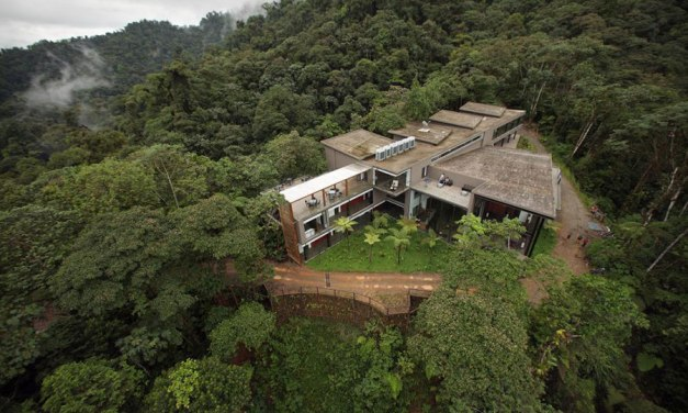 Here's An Idea For Saving The Rainforests: Buy One