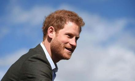 Honoring Diana, Prince Harry Urges Landmine-free World