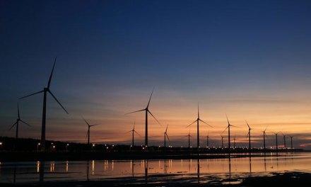 Renewable Energy: Managing Investors' Risks and Responsibilities