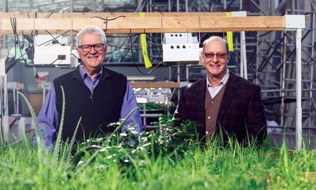 Farm Grows 'Organic' Returns for Impact Investors