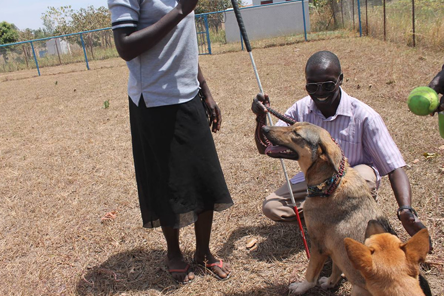 Therapy Dogs Heal Traumatized Survivors of Brutal Ugandan War