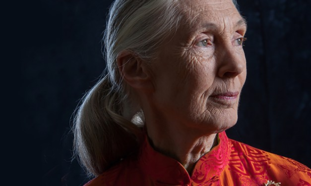 Jane Goodall at 85: What Animals Can Teach us About Leadership