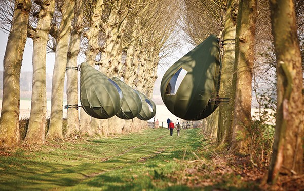 Could Your Next Holiday be Inside a Tree Pod?