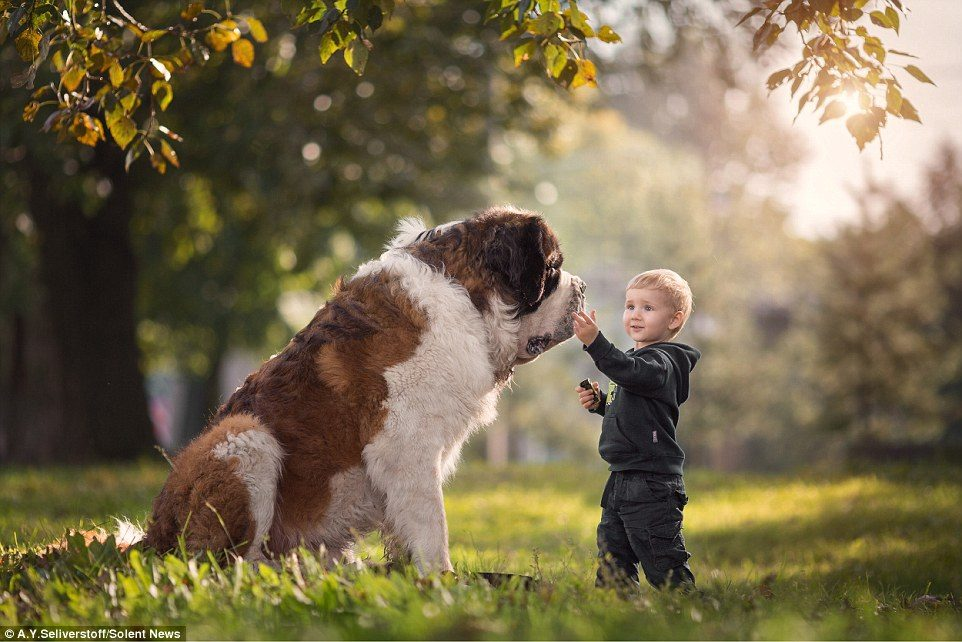 dogs-and-kids-1
