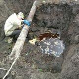 Гайсинский Спиртзавод Затопил Реку Нечистотами -1