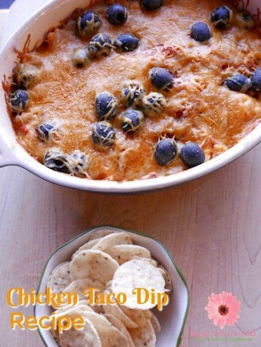 Chicken Taco Dip Recipe