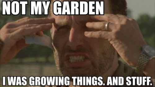 85248-Rick-Grimes-meme-not-my-garden-HG6E