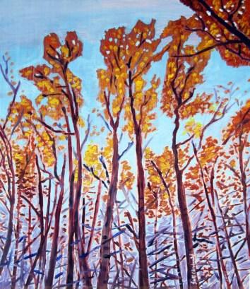 Autum-Aspen-Trees