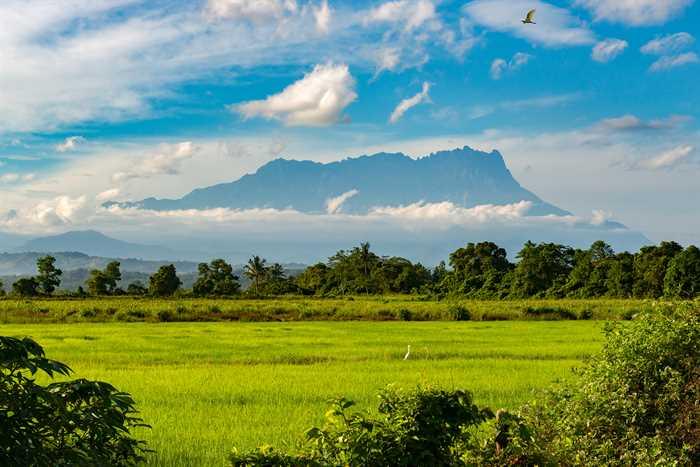 Kinabalu1