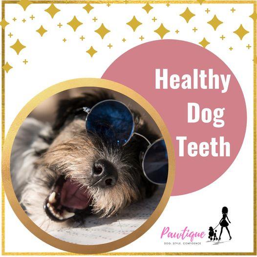 Happy mouth, happy dog.
