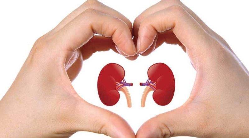 Cum să ne curățăm rinichii în mod natural? Rețeta bătrânească pentru a dizolva pietrele și a elimina nisipul