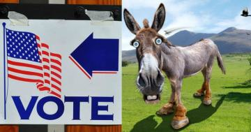 Mail-In Voting Mix-Up Sees Ballots End Up in the Wrong State