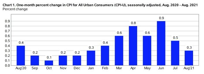 CPI chart 8-21