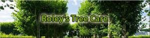 tree service riverside ca