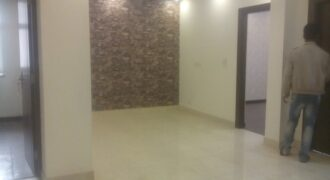 2 bhk flat in IP Extension