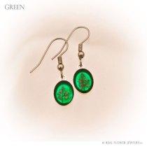 FE2-green