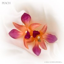 OBR-MAG-2-peach
