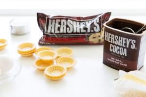 Mini Chocolate Tarts Ingredients