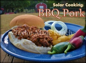 BBQ-Pork-Sandwich-Taylor-Made-Ranch