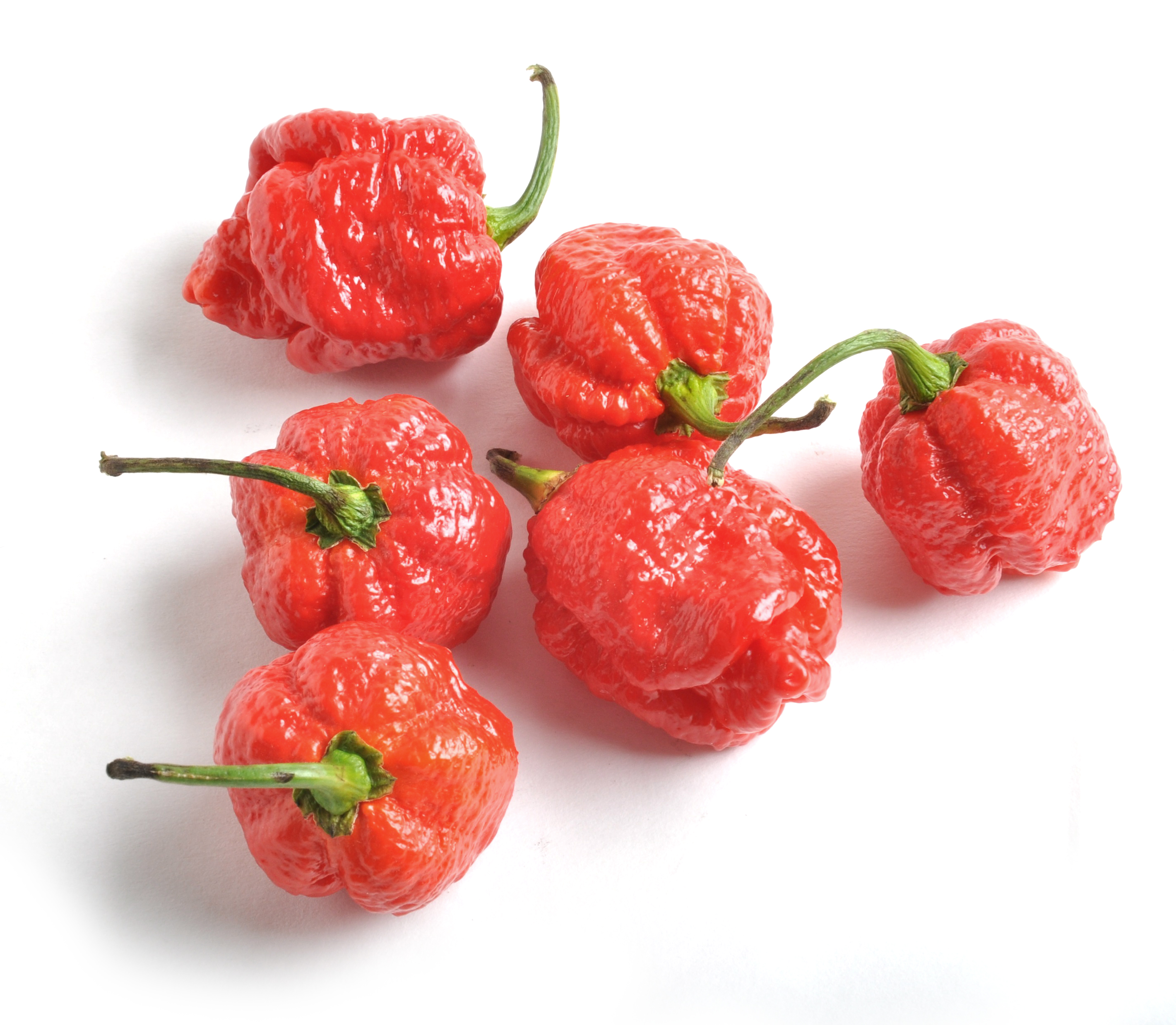 Bhut Jolokia vs. Scorpion Peppers | Super Hot Pepper Review