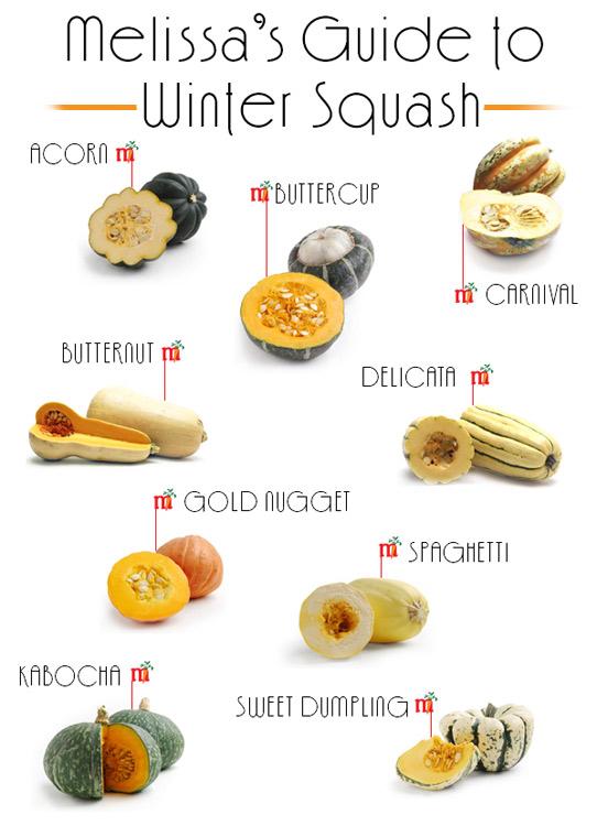 Winter Squash : Visual Guide + Recipes
