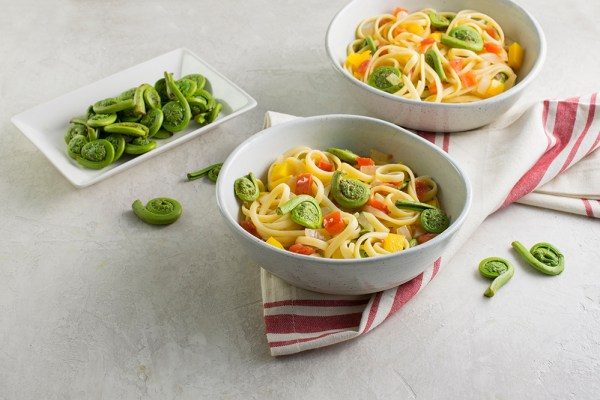 fiddlehead fern pasta
