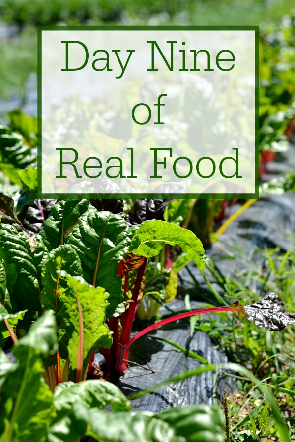 Day Nine of Real Food includes healthy recipes without processed food. It's such a treat to be able to eat a clean, whole food diet.