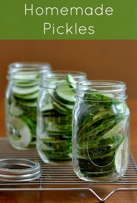 These homemade pickles are delicious and frugal! Try this easy recipe to add some flavor to your favorite sandwich.