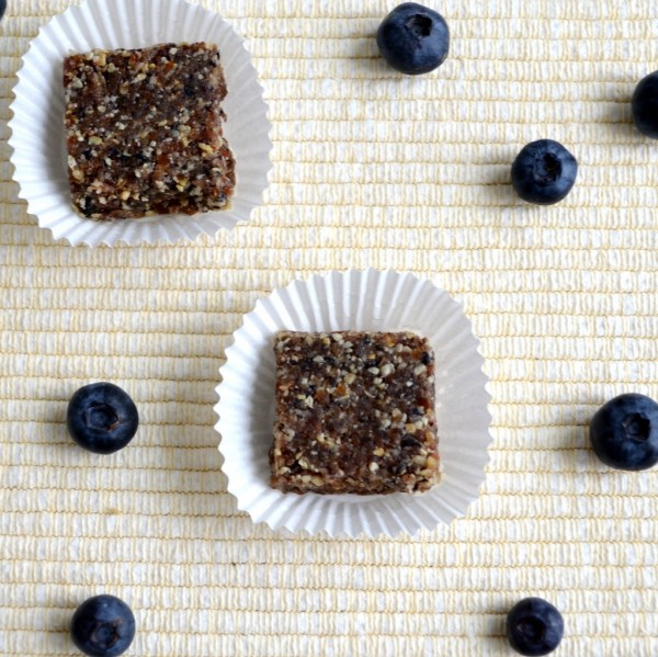 blueberry lemon larabar recipe