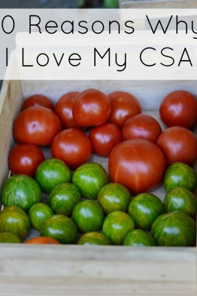 Ten Reasons Why I Love My CSA Farm Share