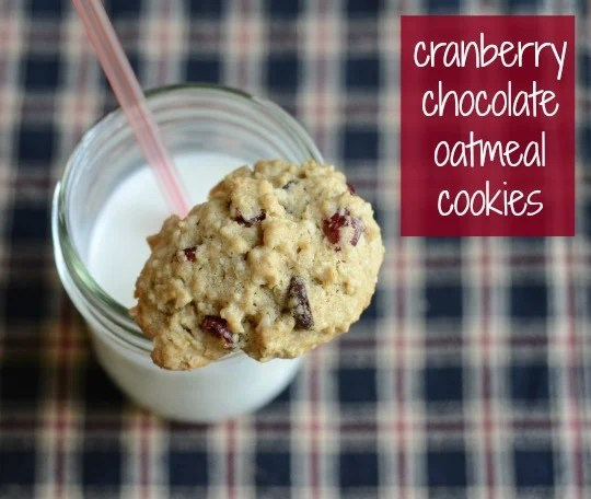 These cranberry chocolate oatmeal cookies are so, so good! I love this healthy recipe when I'm looking for dessert.