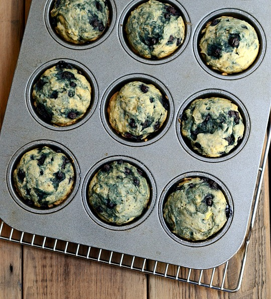chia seed blueberry muffins in pan