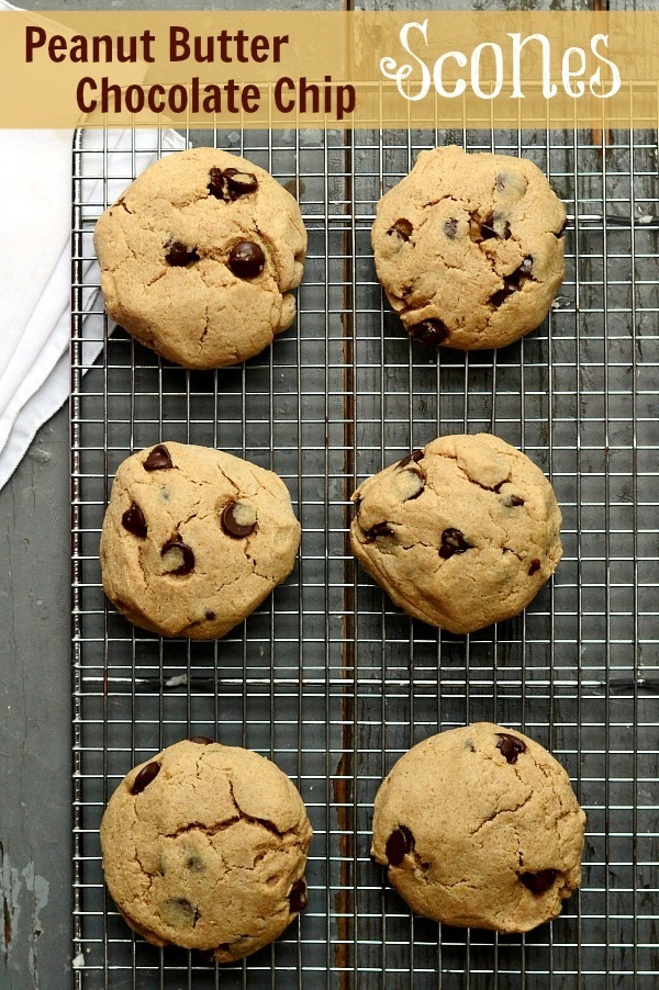 These Peanut Butter Chocolate Chip Scones are such a delicious snack! I love healthy recipes like this.