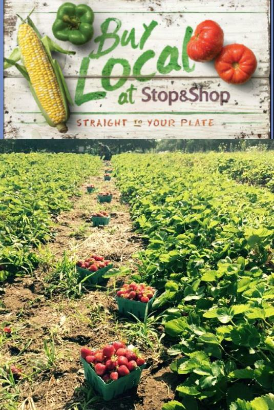 Stop and Shop's Buy Local program features fruits and vegetables in their produce department from over 50 local New England farms. Great option for summer groceries!