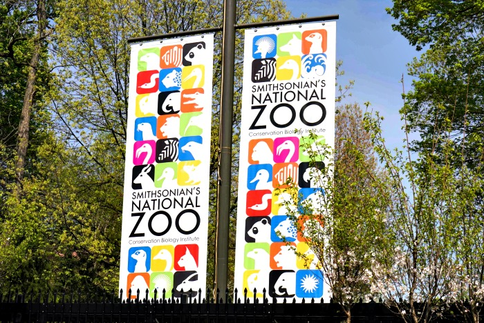 The Smithsonian Zoo is one of the great free attractions in Washington, D.C.