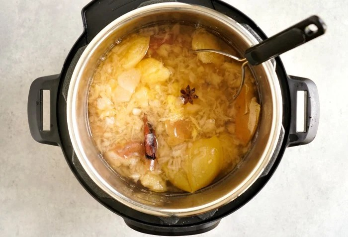 Instant Pot apple cider ingredients