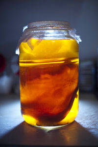 kombucha-istock-200x300 The First of my LOST and FORGOTTEN SACRED SUPER FOOD series….KOMBUCHA