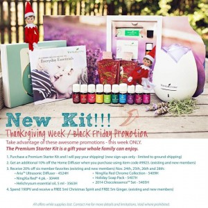 youngliving-blog-300x300 20 Fun Gift Ideas for the REAL FOOD Foodie's and Health Nuts in your Life!