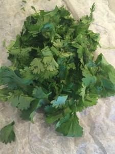 IMG_5205-225x300 Three Tricks that make RAW Kale taste yummy!