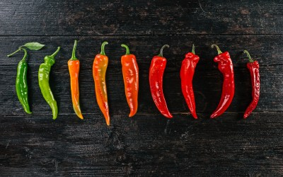 cayenne-pepper Blog