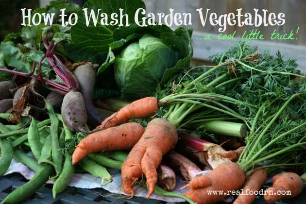 How to Wash Garden Vegetables   Real Food RN