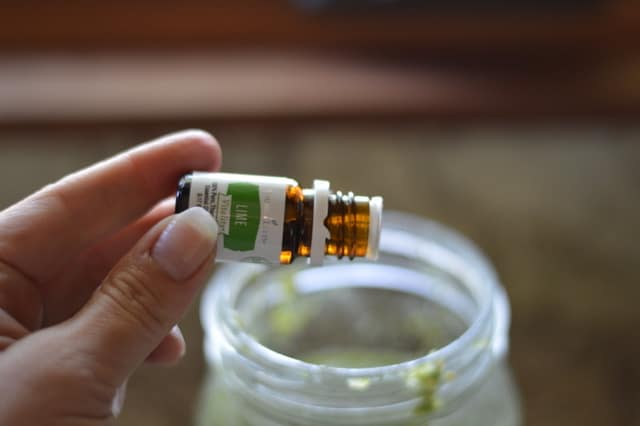 Lime Essential Oil |Tomatillo Salsa Verde Recipe