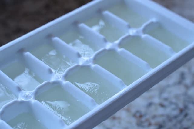Low Carb Pina Colada Recipe   Coconut Milk Ice Cubes   Real Food RN