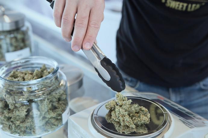 cannabis flower dispensary