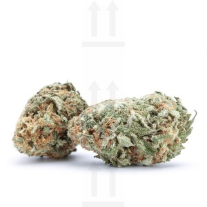 amherst sour diesel review