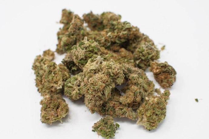cannabis strain buds